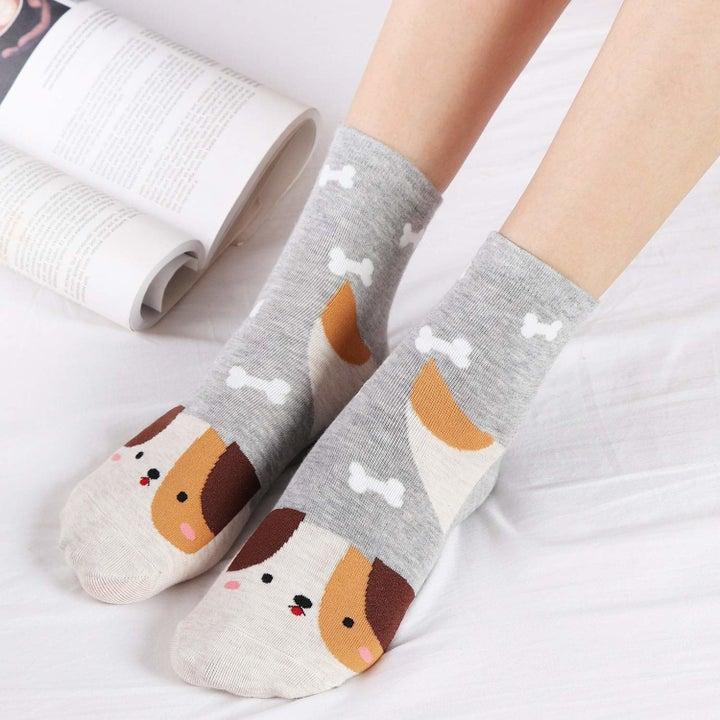 model wears dog socks