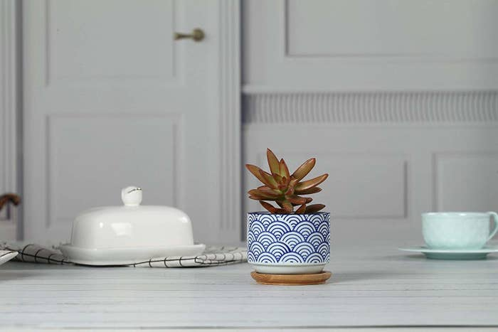 35e640592be A wavy ceramic planter perfect for any desk-plant enthusiast.