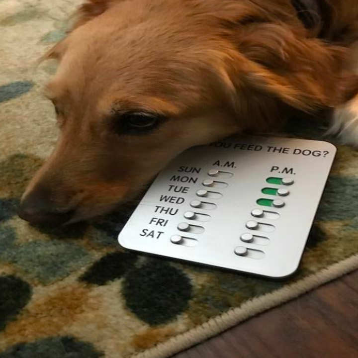 A defeated-looking dog next to the product