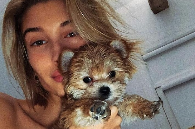 just wanna make sure you all saw justin and hailey bieber s new dogson
