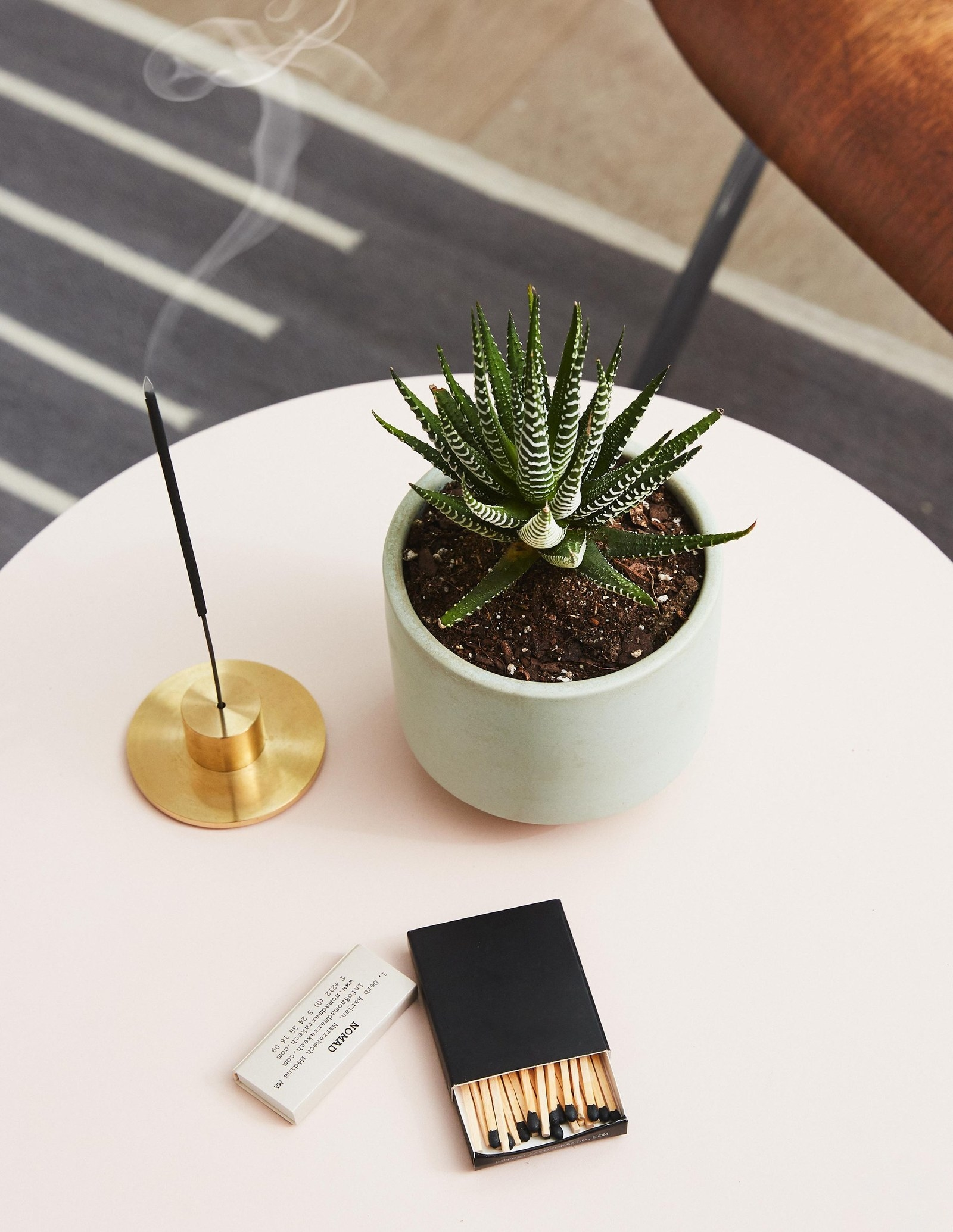This Haworthia Zebra plant comes already potted in the planter shown.Get it from The Sill for $31 (available in five planter colors).