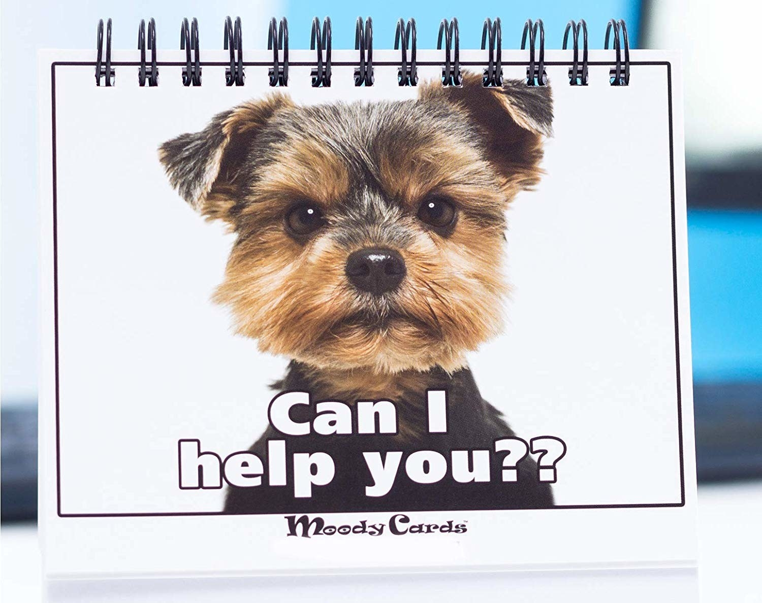 """a desk pad that has a dog that is saying """"can I help you?"""""""