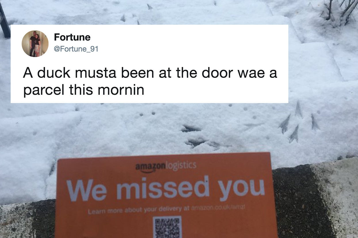 50 of the funniest scottish tweets that have graced the internet in 2018 buzzfeed 1302 pm et december 03
