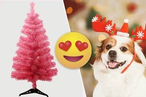 Decorate For The Holidays And We'll Give Your Dog A Festive Nickname