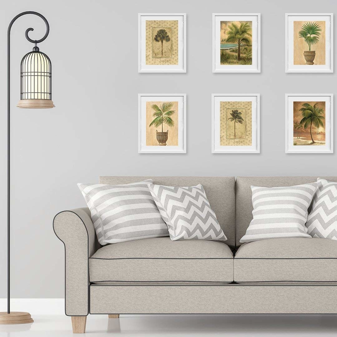 The prints of palm framed on a wall
