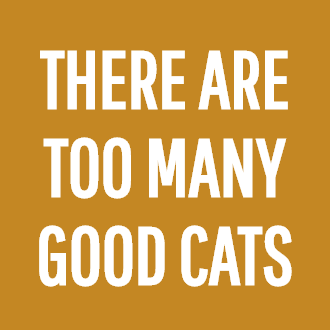 THERE ARE TOO MANY GOOD CATS