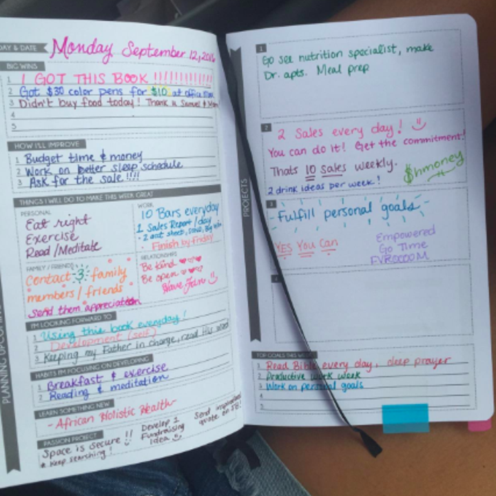 A reviewer's planner pages with all the sections filled out in colorful ink