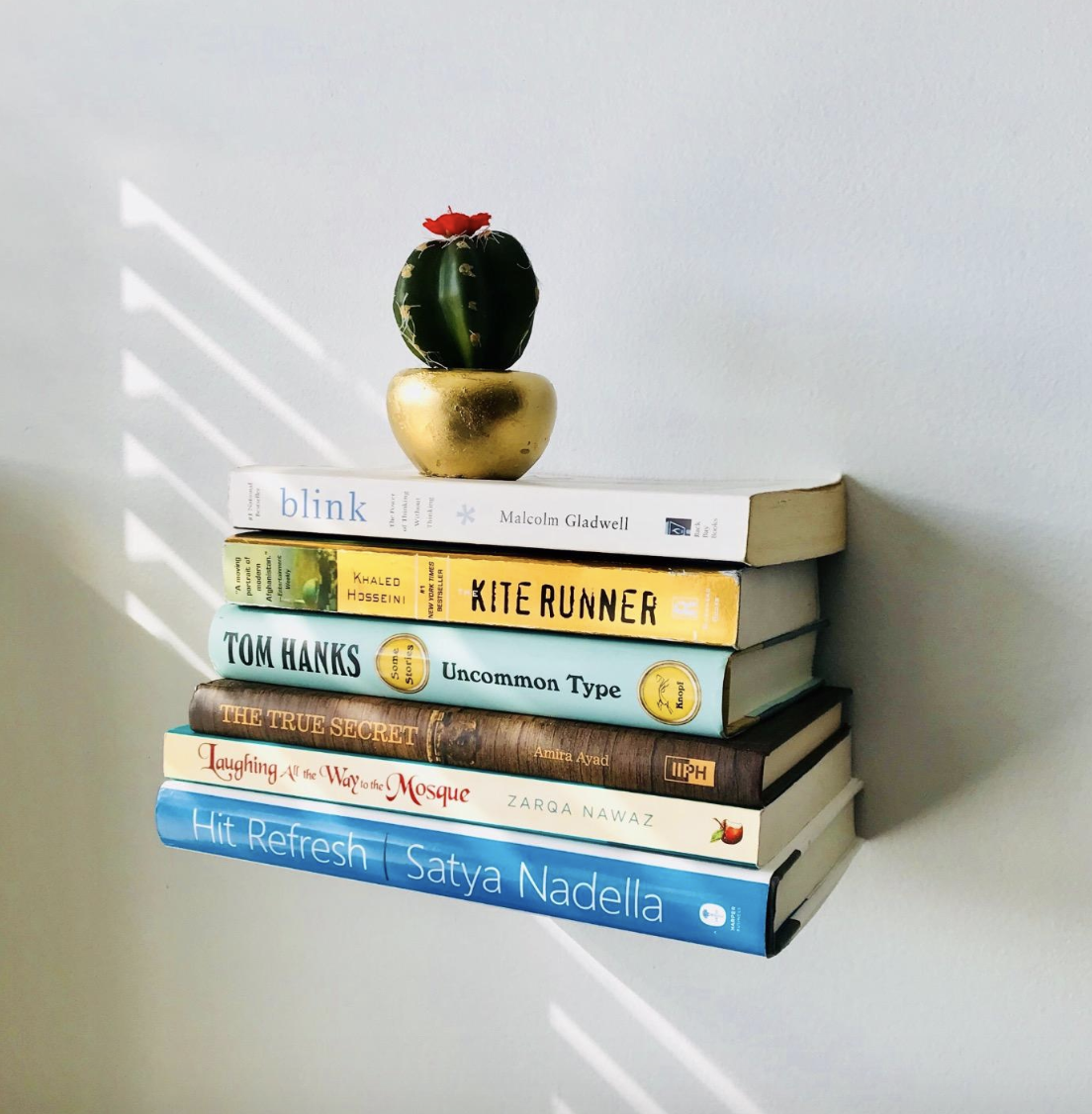 review photo of six books seemingly floating from the wall with a small cactus on top