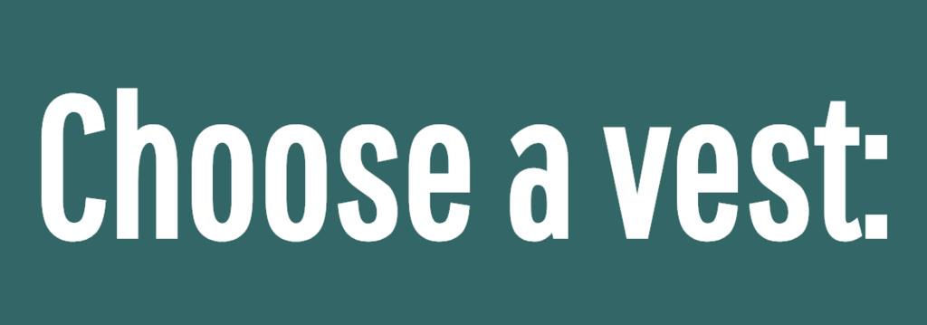 Choose a vest:<br />