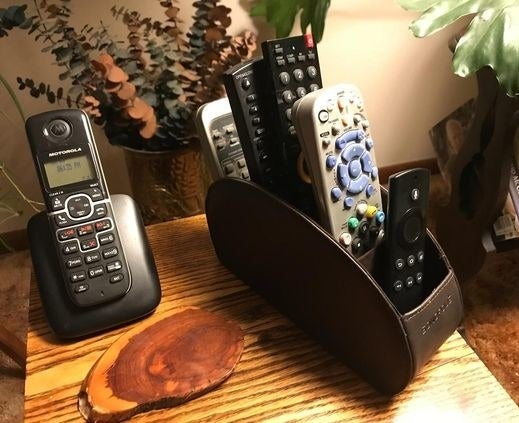 A reviewer's remotes in the organizer