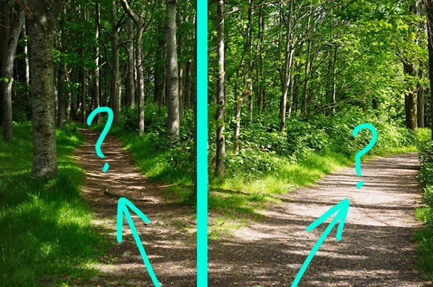 Your Hiking Trip Went Wrong — Can You Make It Home?