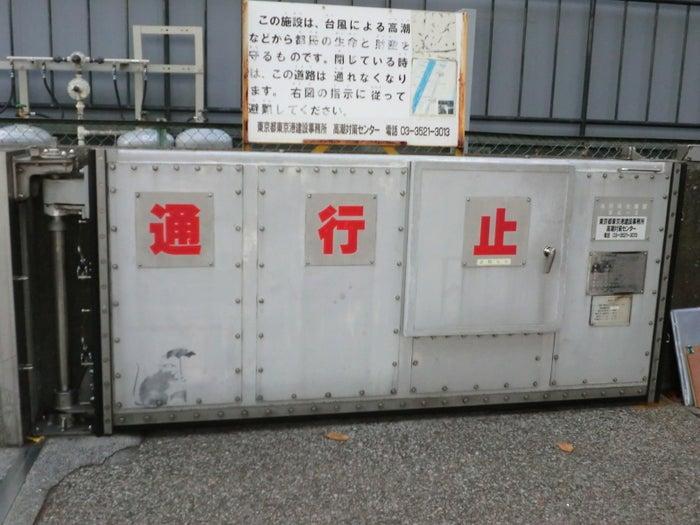 強権を嫌うバンクシーとネズミの掛け合わせということもあり、Twitterでは「築地市場から逃げ出したのでは」「何かの皮肉では」というリプライも付いている。都内の落書きをめぐっては、昨年11月、「FREE REFUGEES」(難民たちを解放せよ)などと描かれたスプレー落書きを東京入国管理局が問題視。管理者の東京都が消していた。
