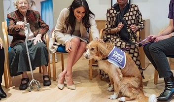 Meghan Markle Went To A Cat And Dog Shelter, And You Try Reading This Without Adopting One
