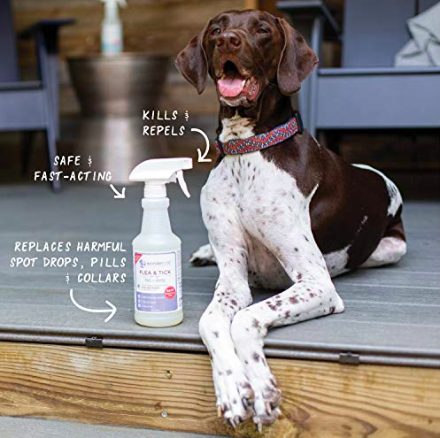 A hound dog sitting beside the repellant bottle, with graphics showing that it is fast acting, safe, kills and repels bugs, and replaces harmful drops, pills, and collars