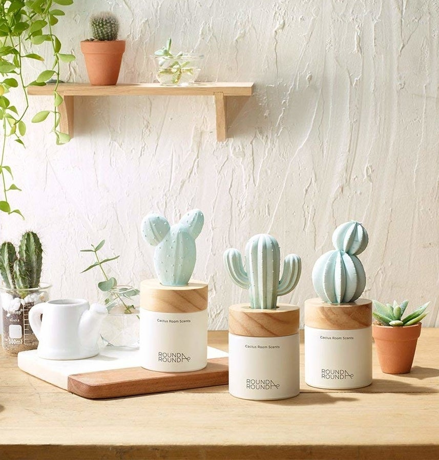Three small cactus diffusers of different styles sit on a wooden table.
