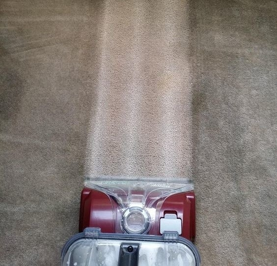 Reviewer image revealing a clean carpet after using the solution