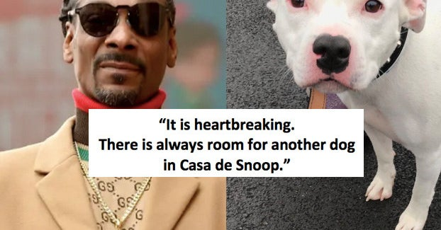 Snoop Dogg Has Offered To Adopt And Abandoned Dog Named Snoop