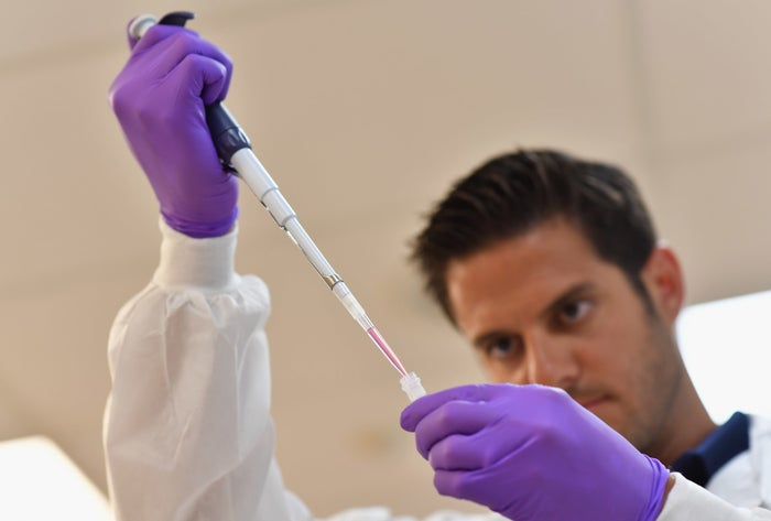 A laboratory worker prepares a DNA sample.