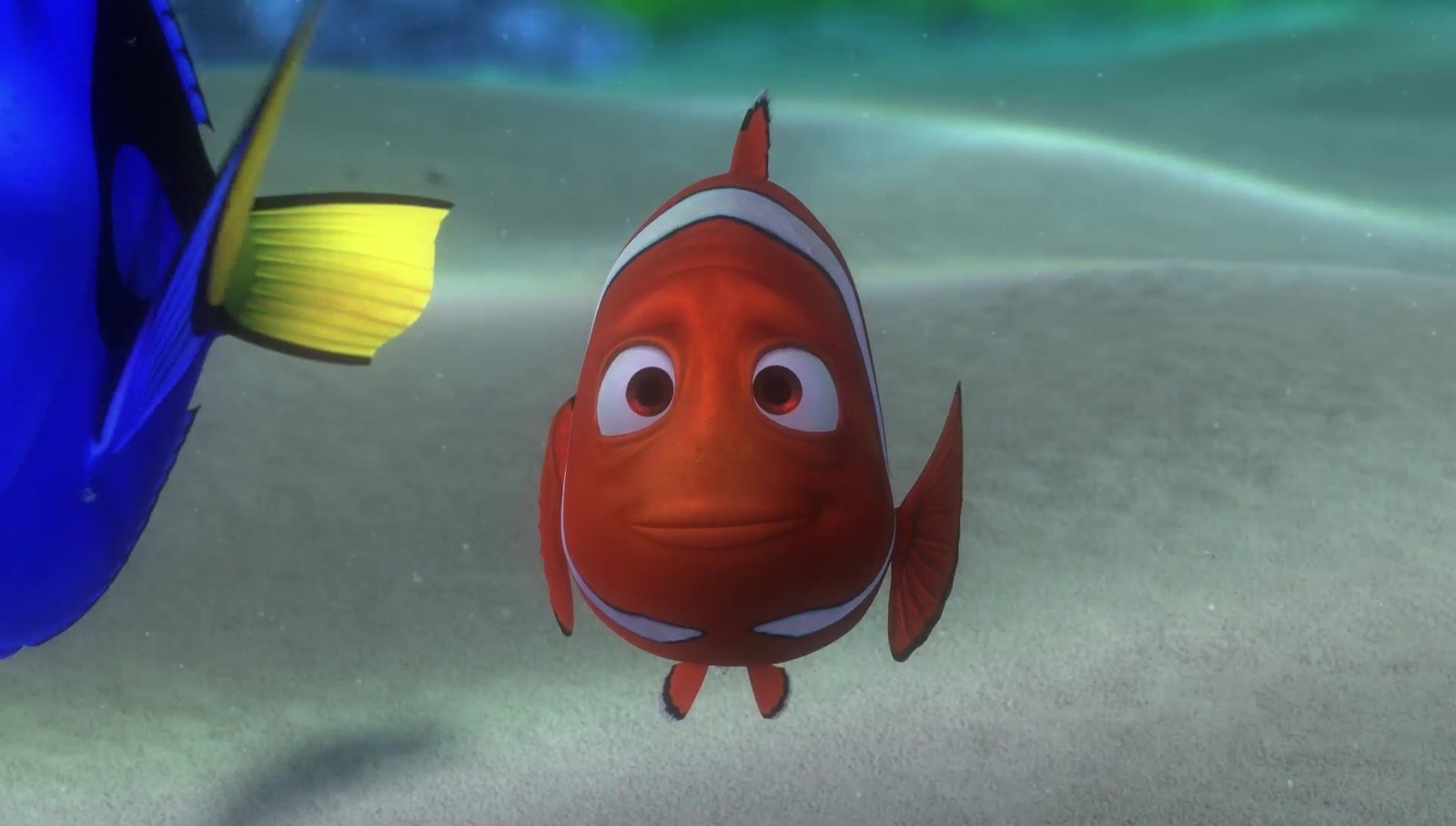 William H. Macy was  originally the voice of Marlin in  Finding Nemo — he even recorded the entire movie before he was replaced.
