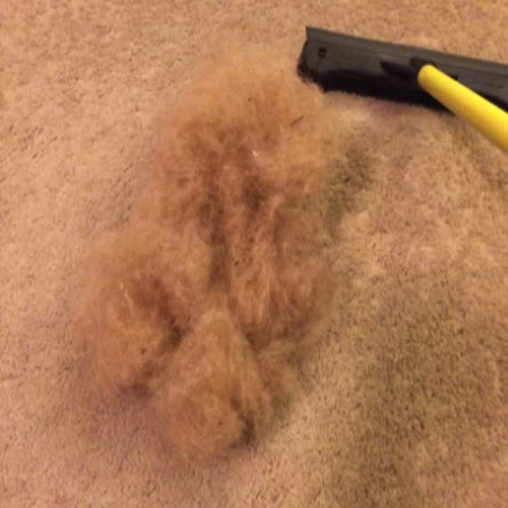 a reviewer's pile of hair pulled from their carpet with the tool