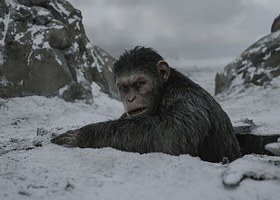 <i>War for the Planet of the Apes</i> (2017)