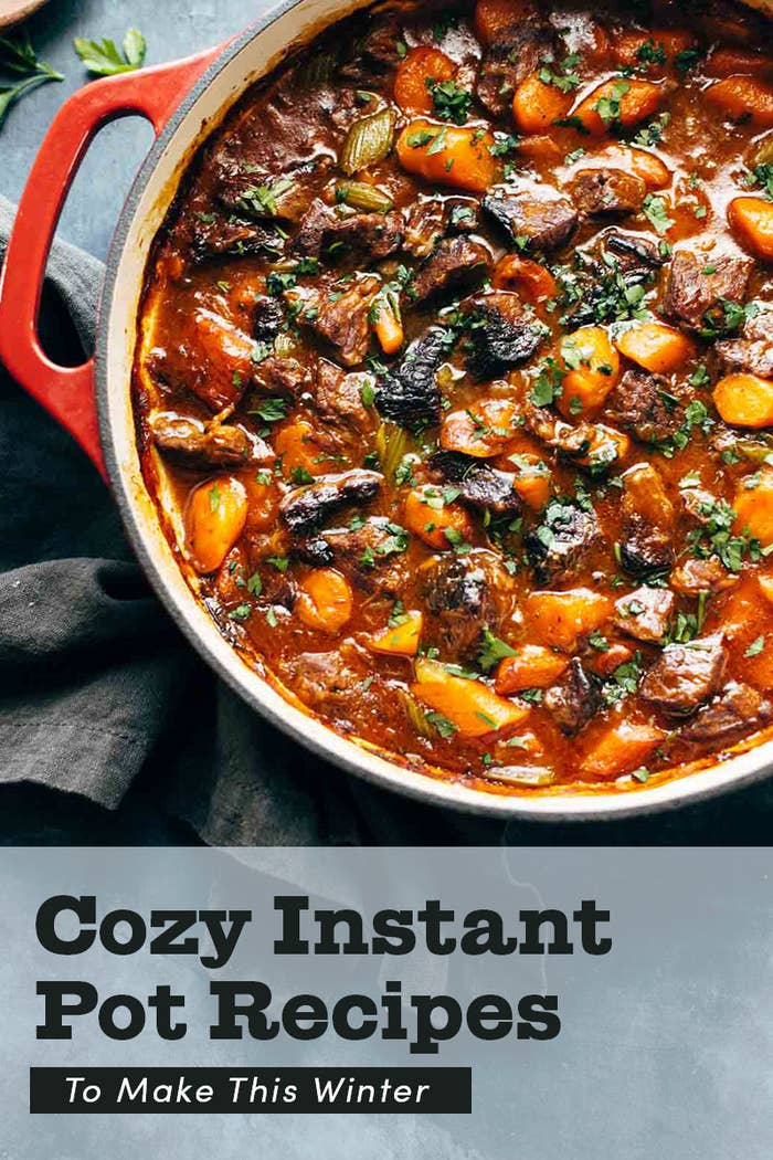 21 Easy Instant Pot Recipes To Make This Winter
