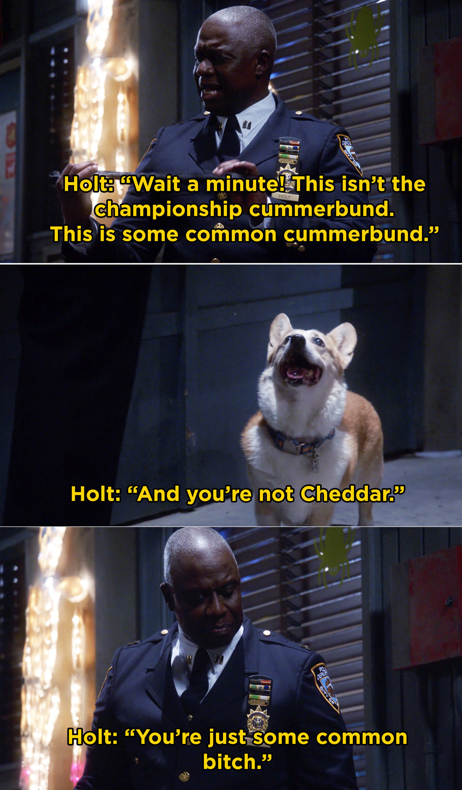 When Captain Holt wasn't fooled by this imposter Cheddar