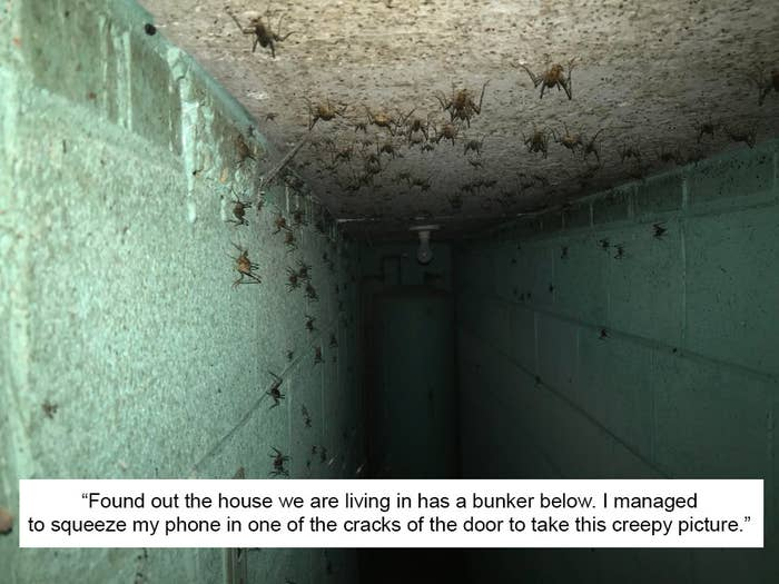 16 Really Creepy Things That People Found Hidden In Their Homes