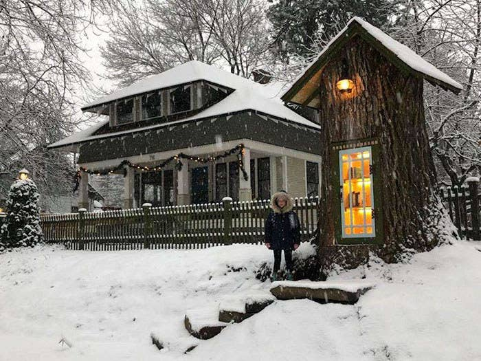 This 110-Year-Old Dead Tree Was Turned Into A Free, Adorable Little Library And It's Lovely