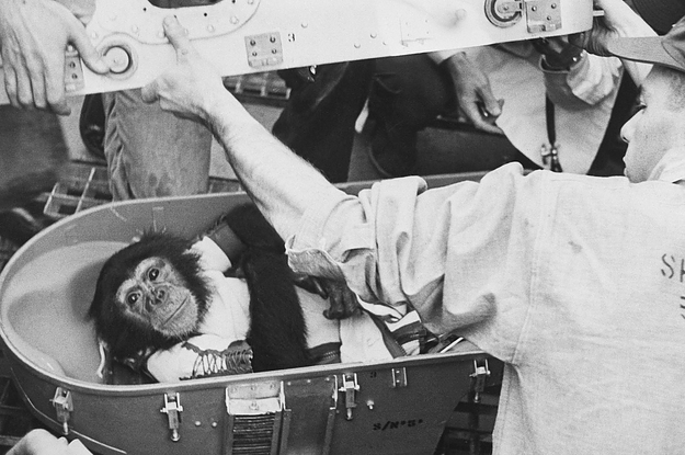 45 Photographs That Show How Space Exploration Has Evolved