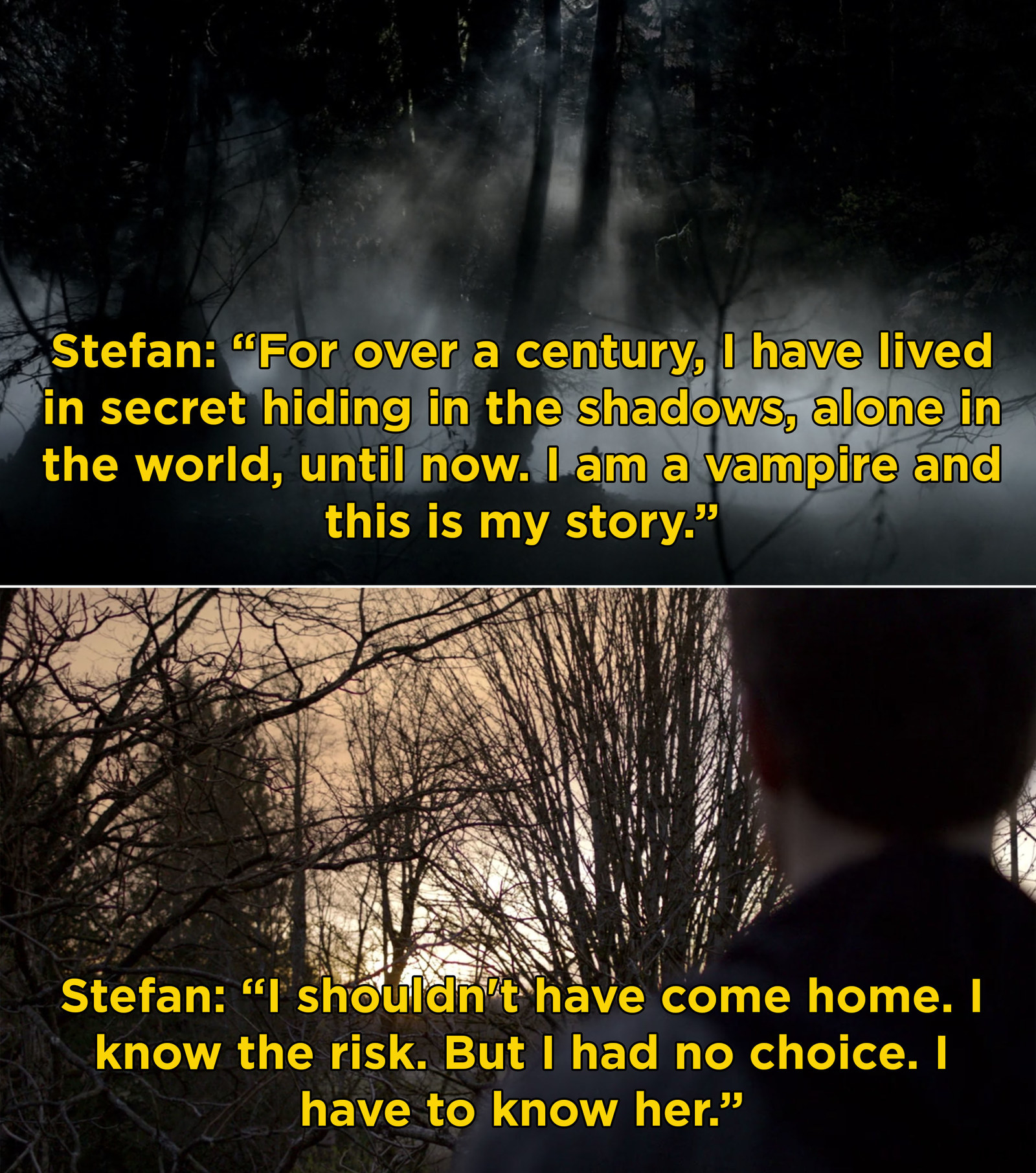 "Stefan Salvatore from  The Vampire Diaries  -  ""We hear his voice before we first see him and it pulls you into the series from the start.""  — abbiec408e02f48"