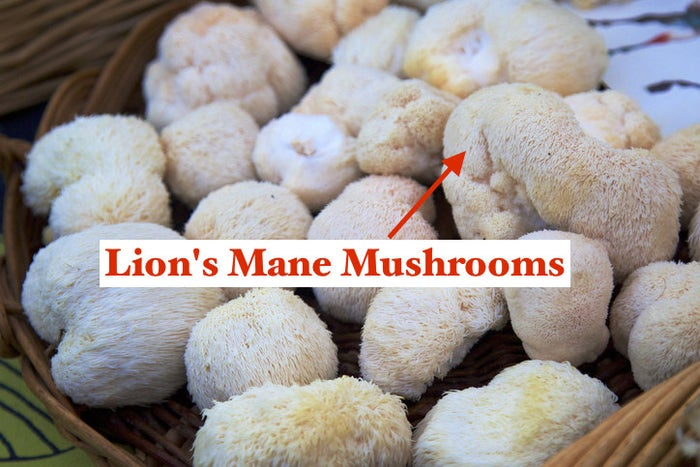 If we want to get specific, Chef Wierdo prefers black beans for beans, and shiitake and lion's mane mushrooms (they're furry and literally look like a lion's mane) because of their meatiness and thick texture. But honestly, all mushroom varietals will add a savory chewiness that's totally meat-free.