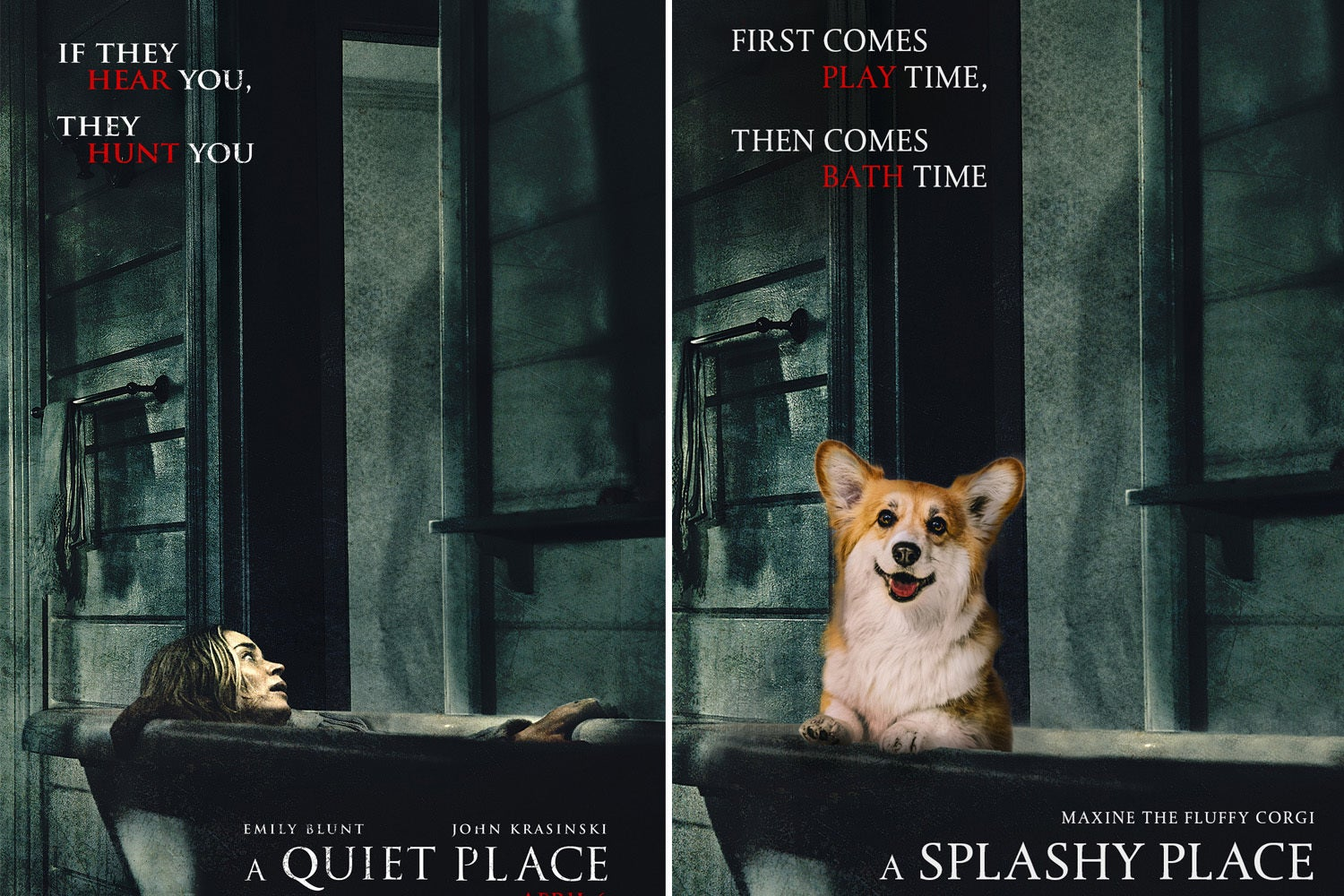 These Corgi-Inspired Movie Posters Are So Cute That Youll Wanna Thank The Academy