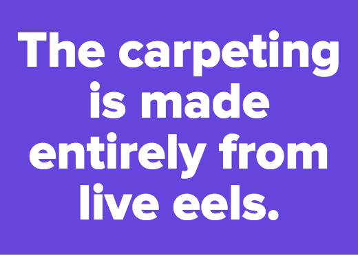 The carpeting is made entirely from live eels.