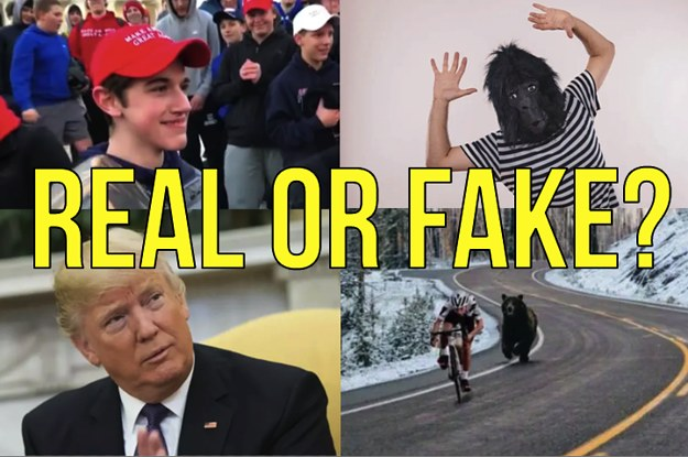 Take This Week's Fake News Quiz And Find Out If You Got Duped By The Internet