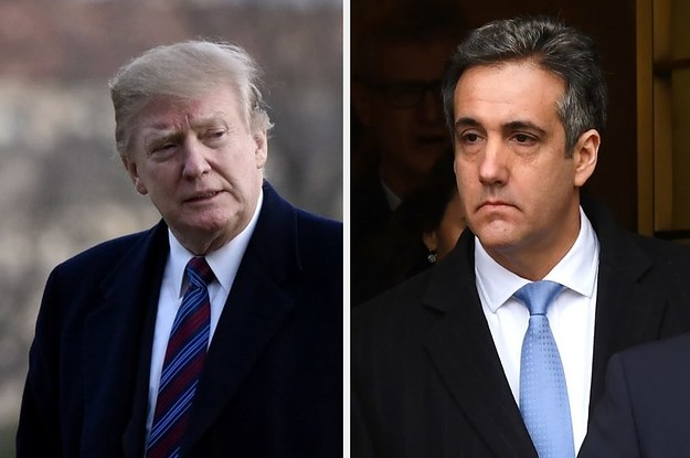 """In His Way, He Was Telling Me To Lie"": Michael Cohen Testified On Trump Moscow Cover-Up"