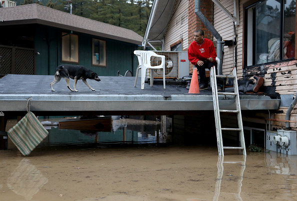 A man and a dog wait on carport of a home in Guerneville, California, for a boat ride evacuation after the Russian River flooded the town.