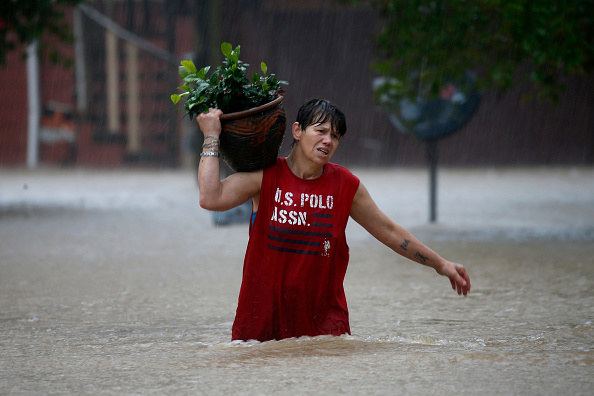 Chris Tipton moves a plant to higher ground as flood waters surround her home in Guerneville.