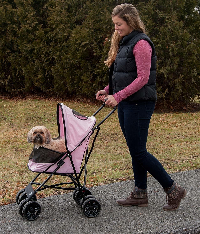model pushes pet stroller