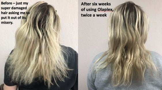 "on the left ""before — just my super damaged hair asking me to put it out of its misery"" over damaged blonde hair. on the right ""after six weeks of using opalex twice a week"" over the same blonde hair with much less damage and split ends."