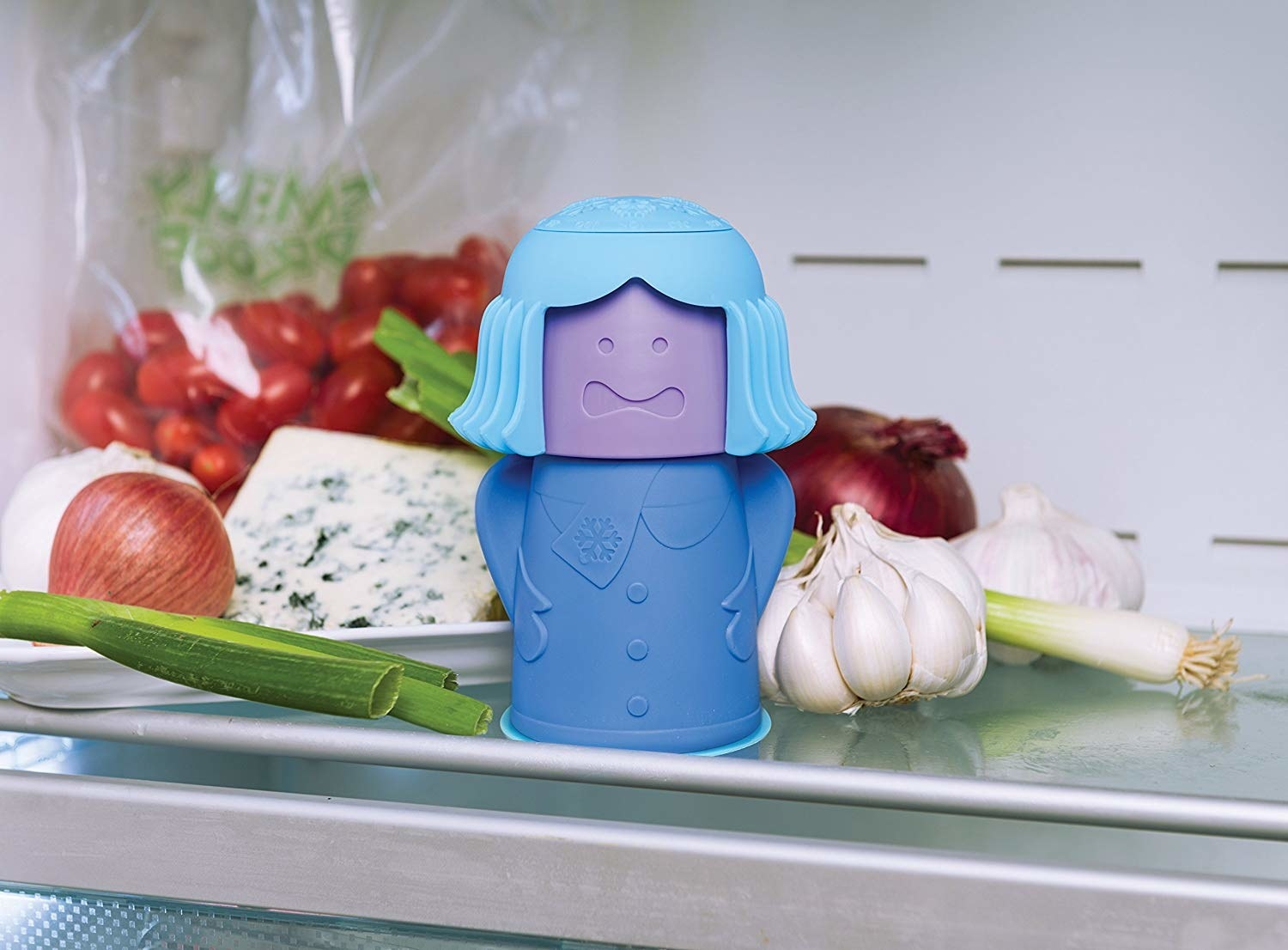 container that looks like a cold person on a fridge shelf with stuff like blue cheese, garlic, and onions