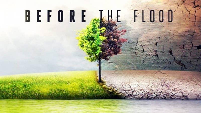 Si quieres aterrarte con el calentamiento global y confirmar su existencia, no te pierdas este documental que va a hacerte querer cambiar absolutamente todos tus hábitos de consumo, con tal de ayudar a este mundo a sobrevivir.