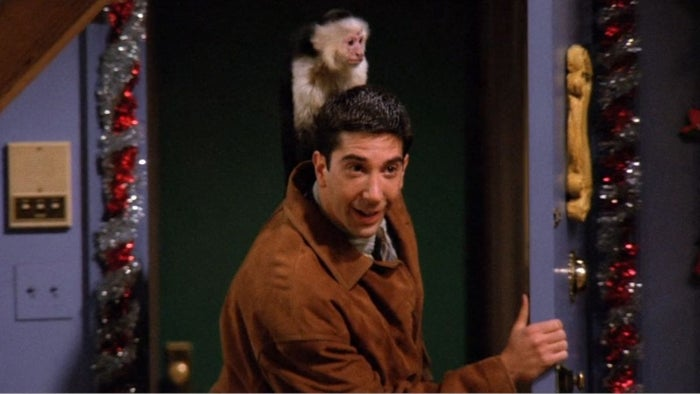 """""""I liked the monkey! I like animals, and the monkey was really cool,"""" he said. """"Schwimmer... Not so much. He's the one that had to work with it the most, so he was like, 'Again with the monkey?' But I got along great with it."""""""