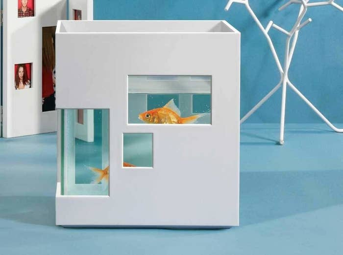 """Promising review: """"Love it! It's so modern an stylish makes me wanna buy more fish just to get another aquarium! Perfect in size! Quality on point!"""" —Amazon CustomerGet it from Amazon for $33."""