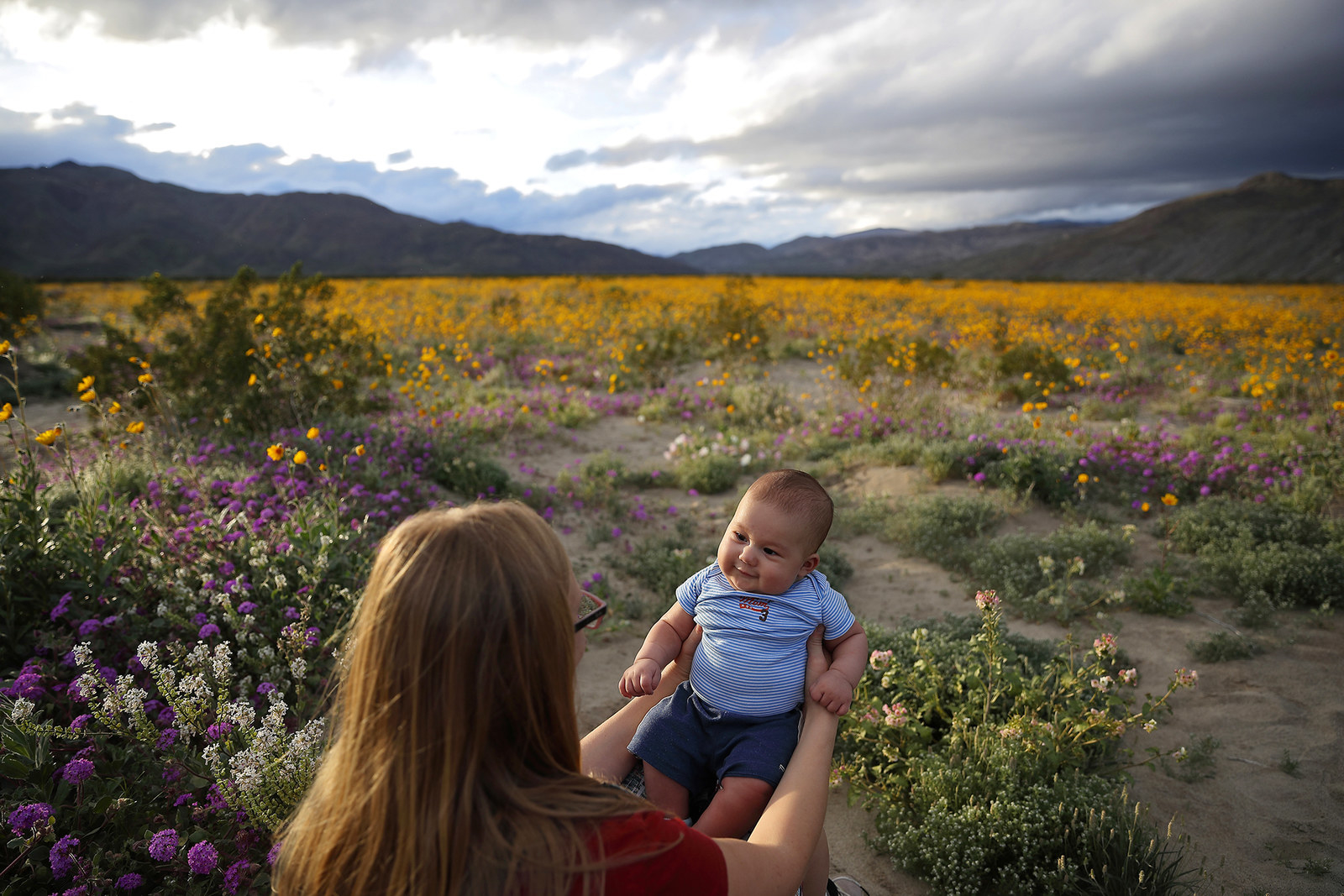 A woman holds her baby amid wildflowers in bloom, March 6.