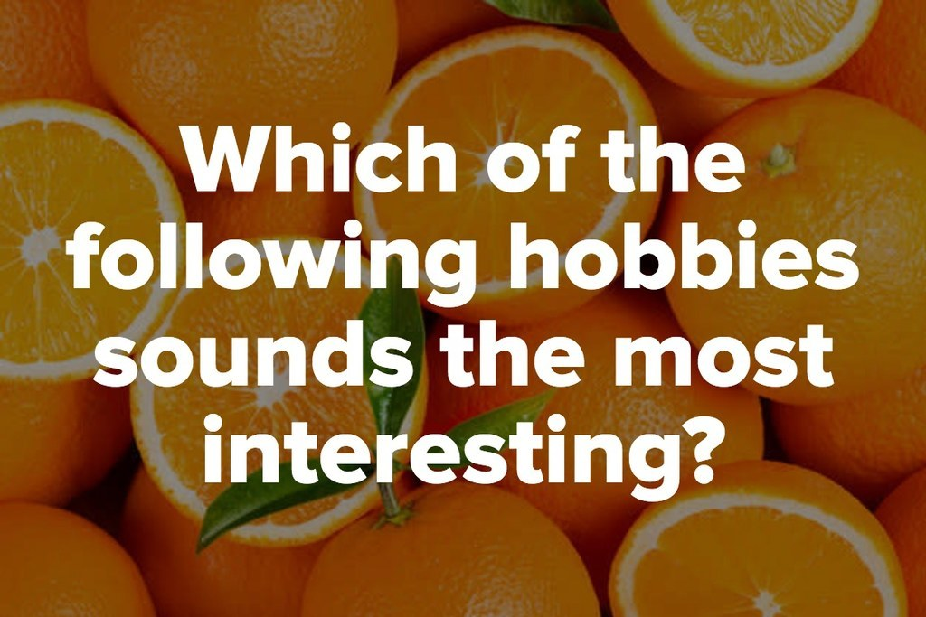 Which of the following hobbies sounds the most interesting?