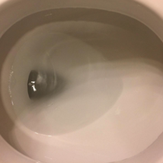 the same toilet bowl all clean after the product was used