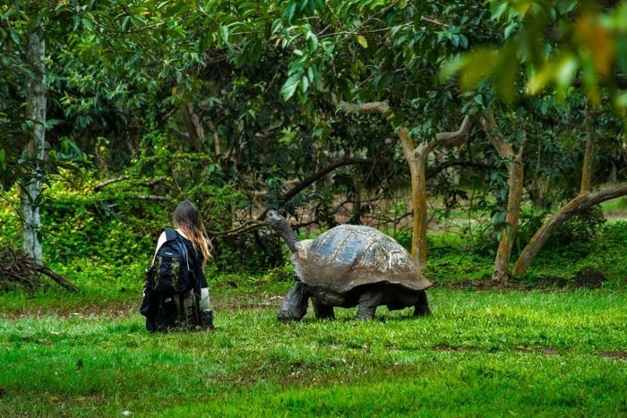 With the increasing awareness of environmental conservation, a lot of industries and businesses are tying in the cause of sustainability with their way of operation and their overall value system. The tourism industry too is joining the bandwagon of instilling ecological balance with the advent and growing adoption of Ecotourism. Ecotourism can be broadly described as a host of travel and hospitality practices that revolve around the ideas of conserving the natural environment and habitat of a region as well as the local population with conscious efforts to reduce the environmental footprint by the hosts as well as the guests. It also champions the cause of educating individuals about the social, environmental and cultural impact of poor travel practices that can cause irreversible damage to the entire ecosystem we call Earth. Let us understand the nuances of Ecotourism and why it is the need of the hour that citizens across the world adopt eco-friendly travel practices.