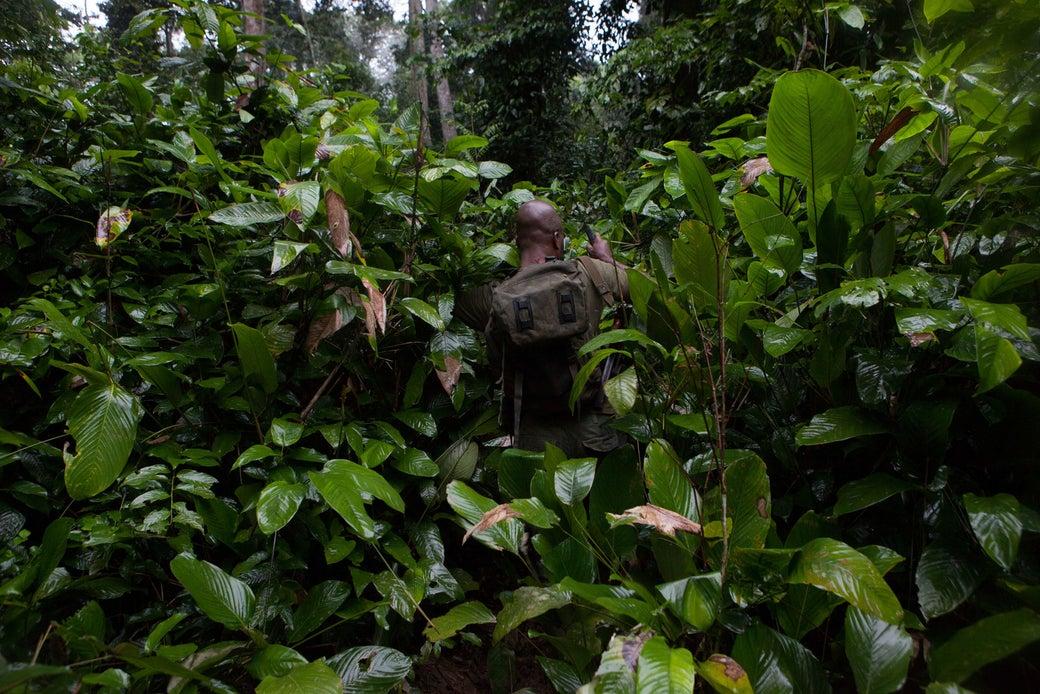 Eco-guards on patrol around Messok Dja cut a way through to an elephant trail.