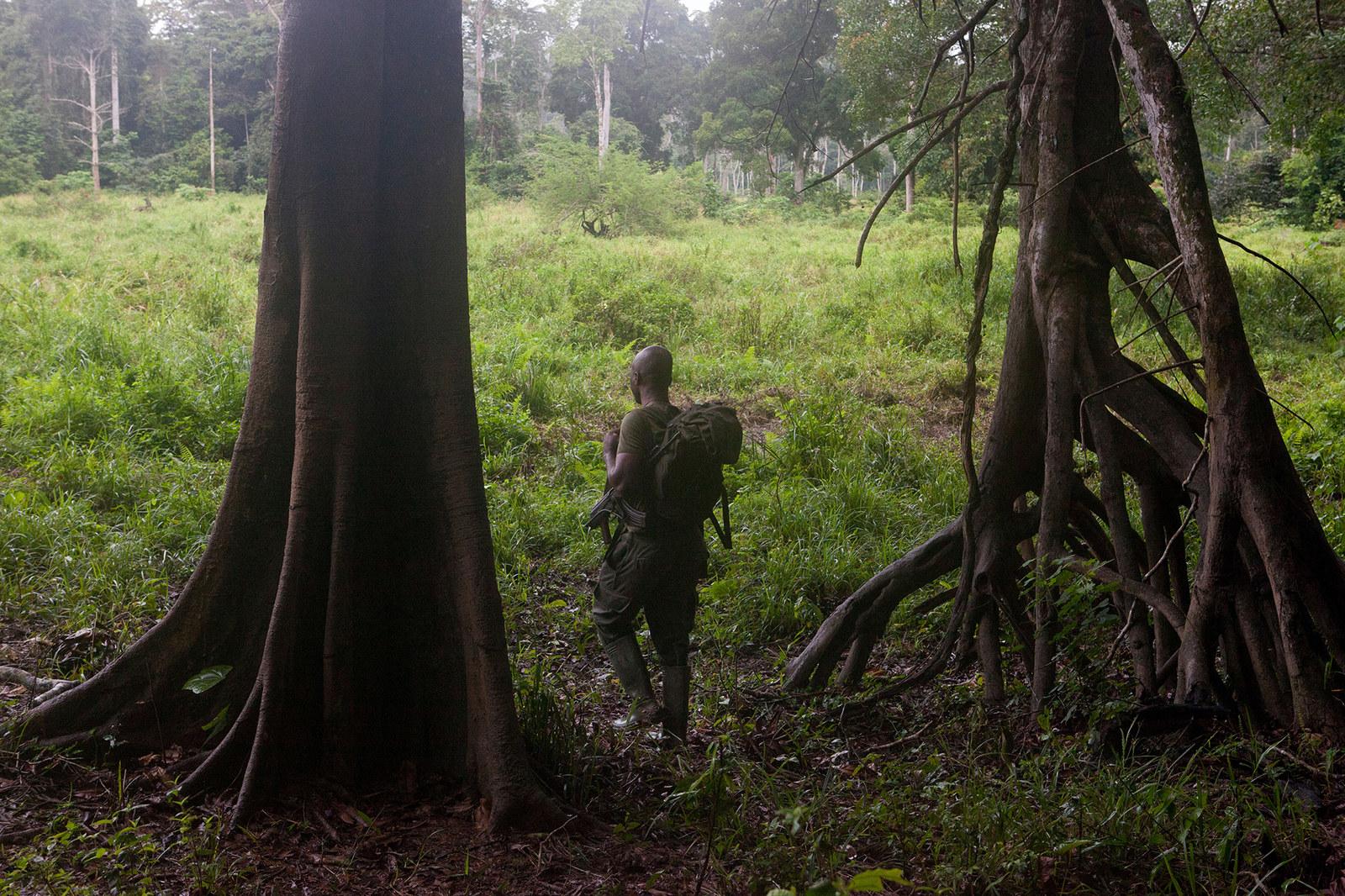 Eco-guards on patrol near Messok Dja.